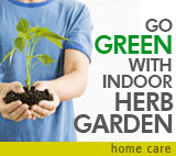 Home Care: Go green with an indoor herb garden